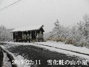 2019-02・11 今日の里山は・・・ (2).JPG