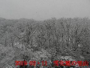2019-02・11 雪化粧の里山 (1).JPG
