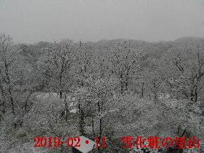 2019-02・11 雪化粧の里山 (2).JPG