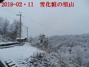 2019-02・11雪化粧の里山 (11).JPG
