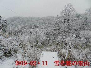 2019-02・11雪化粧の里山 (12).JPG