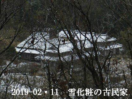 2019-02・11雪化粧の里山 (13).JPG