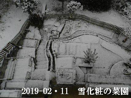 2019-02・11雪化粧の里山 (3).JPG