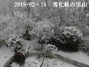 2019-02・11雪化粧の里山 (4).JPG