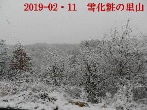 2019-02・11雪化粧の里山 (6).JPG