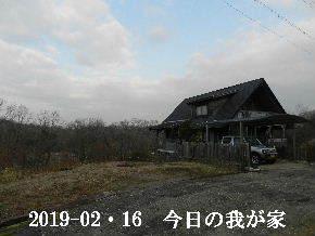 2019-02・16 今日の里山は・・・ (1).JPG