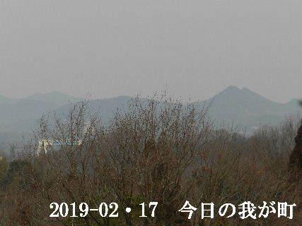 2019-02・17 今日の我が町.JPG