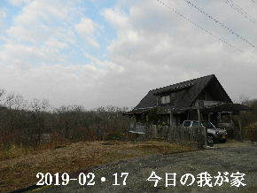 2019-02・17 今日の里山は・・・ (1).JPG