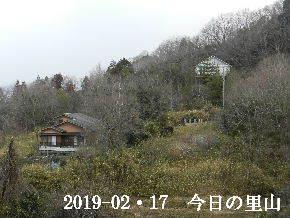 2019-02・17 今日の里山は・・・ (4).JPG