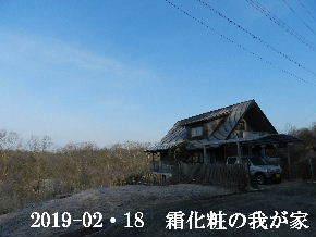 2019-02・18 今日の里山は・・・ (1).JPG