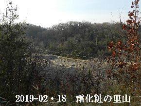 2019-02・18 今日の里山は・・・ (3).JPG