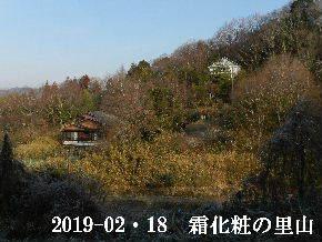 2019-02・18 今日の里山は・・・ (4).JPG