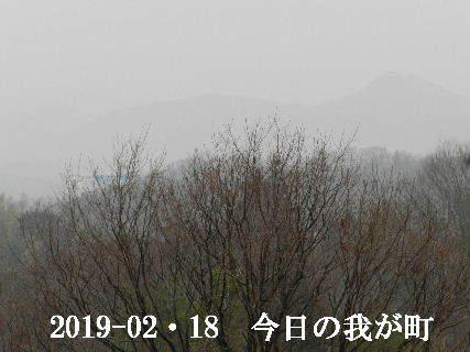 2019-02・19 今日の我が町.JPG