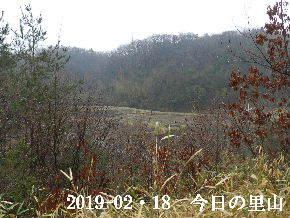 2019-02・19 今日の里山は・・・ (3).JPG