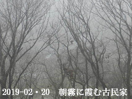 2019-02・20 今日の古民家模様.JPG