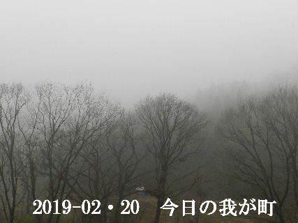 2019-02・20 今日の我が町.JPG