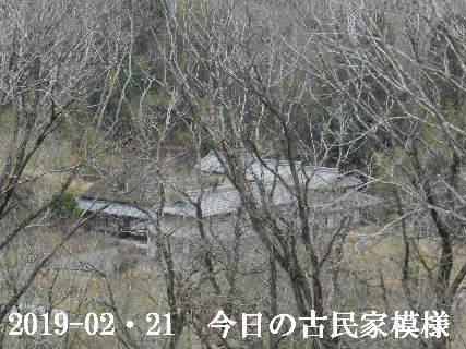 2019-02・21 今日の古民家模様.JPG
