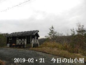 2019-02・21 今日の里山は・・・ (2).JPG