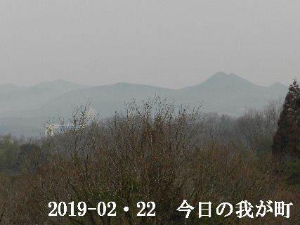 2019-02・22 今日の我が町.JPG