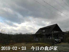2019-02・23 今日の里山は・・・ (1).JPG