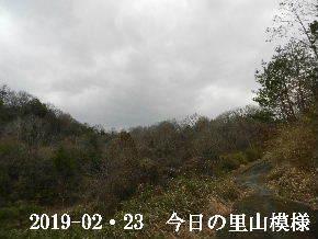 2019-02・23 今日の里山は・・・ (3).JPG