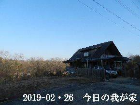 2019-02・26 今日の里山は・・・ (1).JPG