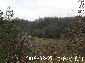 2019-02・27 今日の里山は・・・ (3).JPG