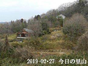 2019-02・27 今日の里山は・・・ (4).JPG