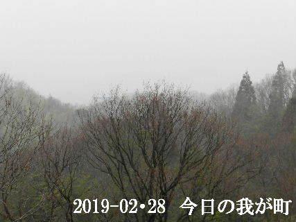 2019-02・28 今日の我が町.JPG