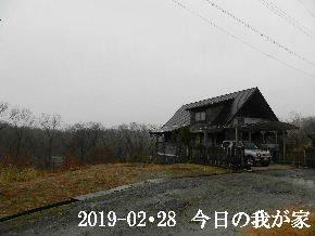 2019-02・28 今日の里山は・・・ (1).JPG