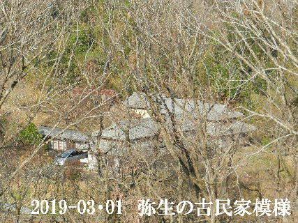2019-03・01 弥生の古民家模様.JPG