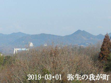 2019-03・01 弥生の我が町.JPG