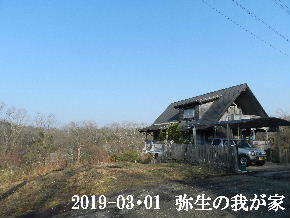 2019-03・01 弥生の里山は・・・ (1).JPG