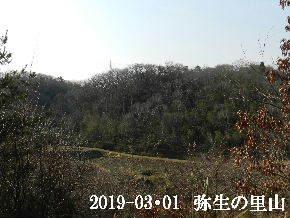 2019-03・01 弥生の里山は・・・ (3).JPG