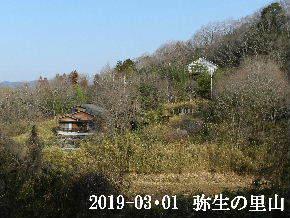 2019-03・01 弥生の里山は・・・ (4).JPG