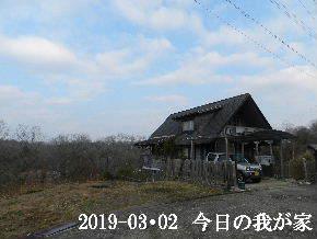 2019-03・02 今日の里山は・・・ (1).JPG