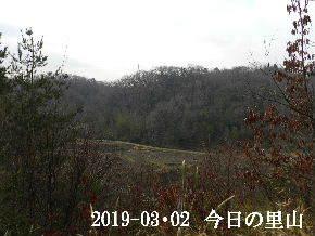 2019-03・02 今日の里山は・・・ (3).JPG