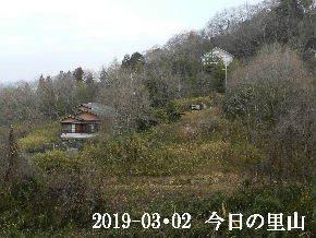 2019-03・02 今日の里山は・・・ (4).JPG