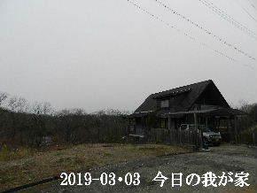 2019-03・03 今日の里山は・・・ (1).JPG