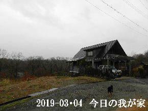 2019-03・04 今日の里山は・・・ (1).JPG