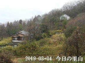 2019-03・04 今日の里山は・・・ (4).JPG