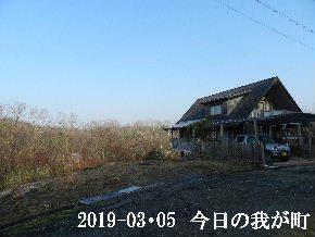 2019-03・05 今日の里山は・・・ (1).JPG