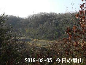 2019-03・05 今日の里山は・・・ (3).JPG