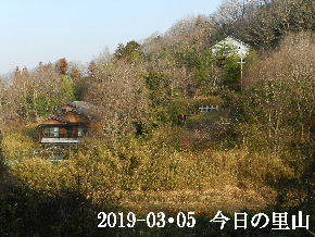 2019-03・05 今日の里山は・・・ (4).JPG