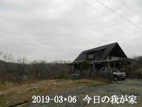 2019-03・06 今日の里山は・・・ (1).JPG