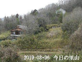 2019-03・06 今日の里山は・・・ (4).JPG