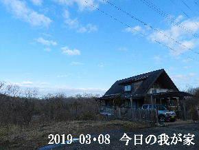 2019-03・08 今日の里山は・・・ (1).JPG