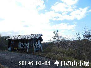 2019-03・08 今日の里山は・・・ (2).JPG
