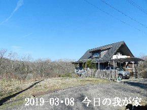 2019-03・09 今日の里山は・・・ (1).JPG