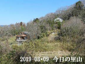 2019-03・09 今日の里山は・・・ (4).JPG